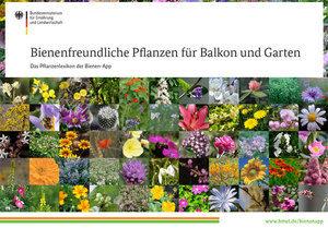 Bienenweidepflanzen-Broschüre